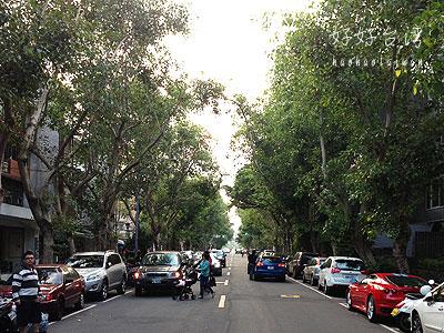 富錦街を散歩① funfuntownとFujin Tree