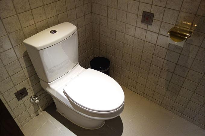 デラックスマーベラスのトイレはウォシュレットなし